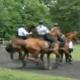 unite-equestre-pp