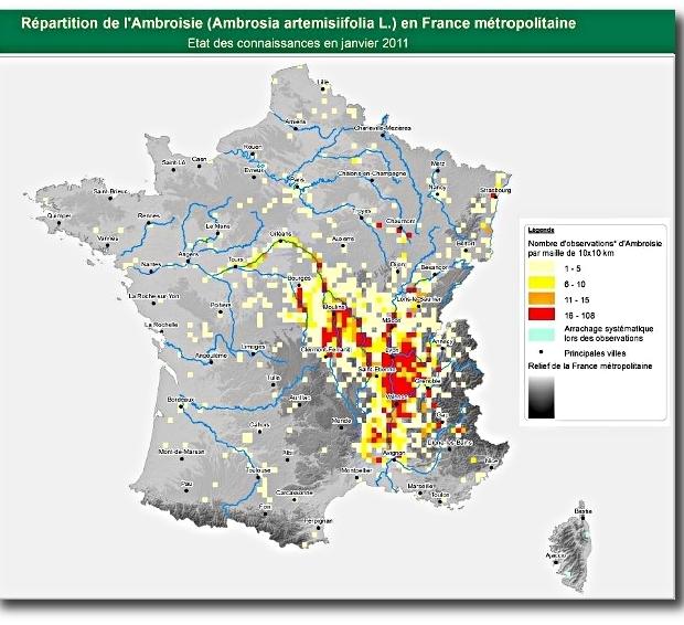 ambroisie-carte_de_france_620