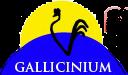 Logo_Gallicinium
