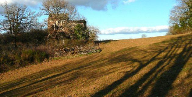 comment protéger une maison sur un terrain isolé